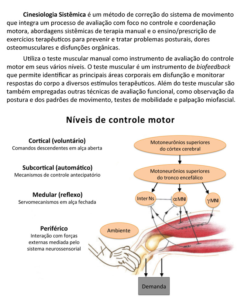 Introduction to Systemic Kinesiology